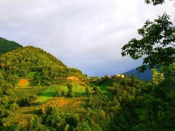 macahel köyü(camili köyü)